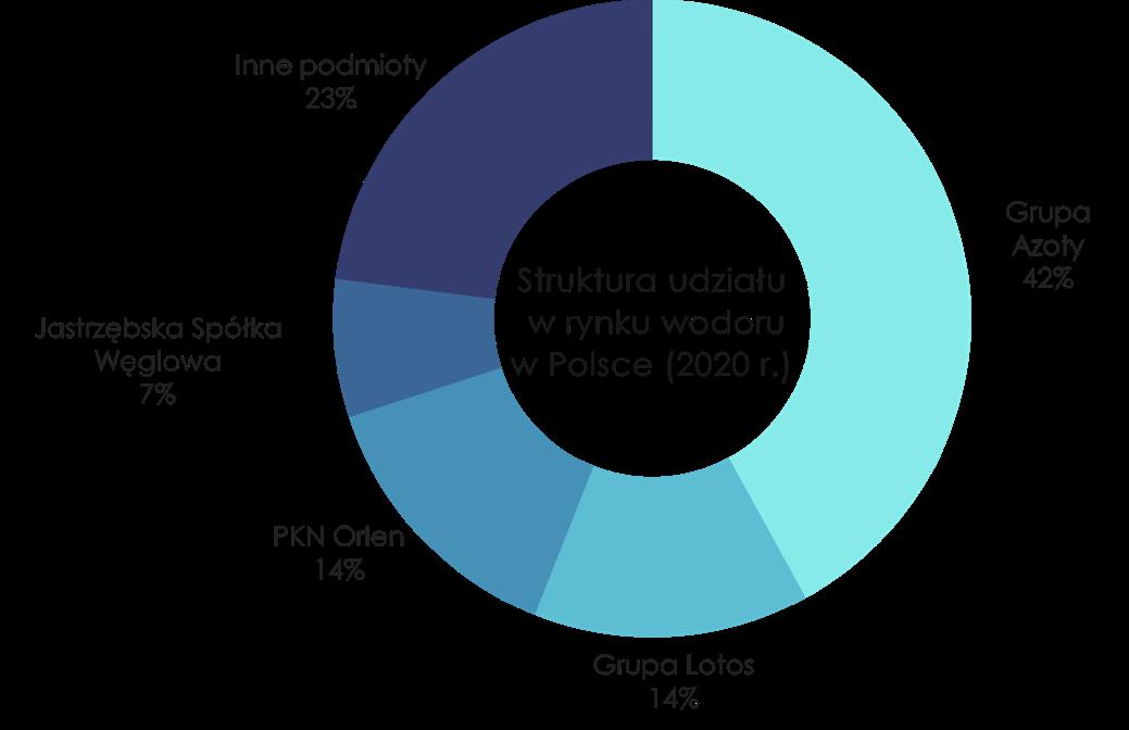 Struktura udziału w rynku wodoru w Polsce w 2020 roku. Grafika: Ministerstwo klimatu i środowiska